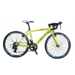 "FIELD 24"" cyclocross"
